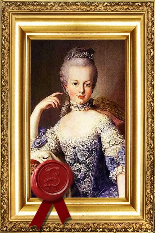 Les Secrets de Marie-Antoinette