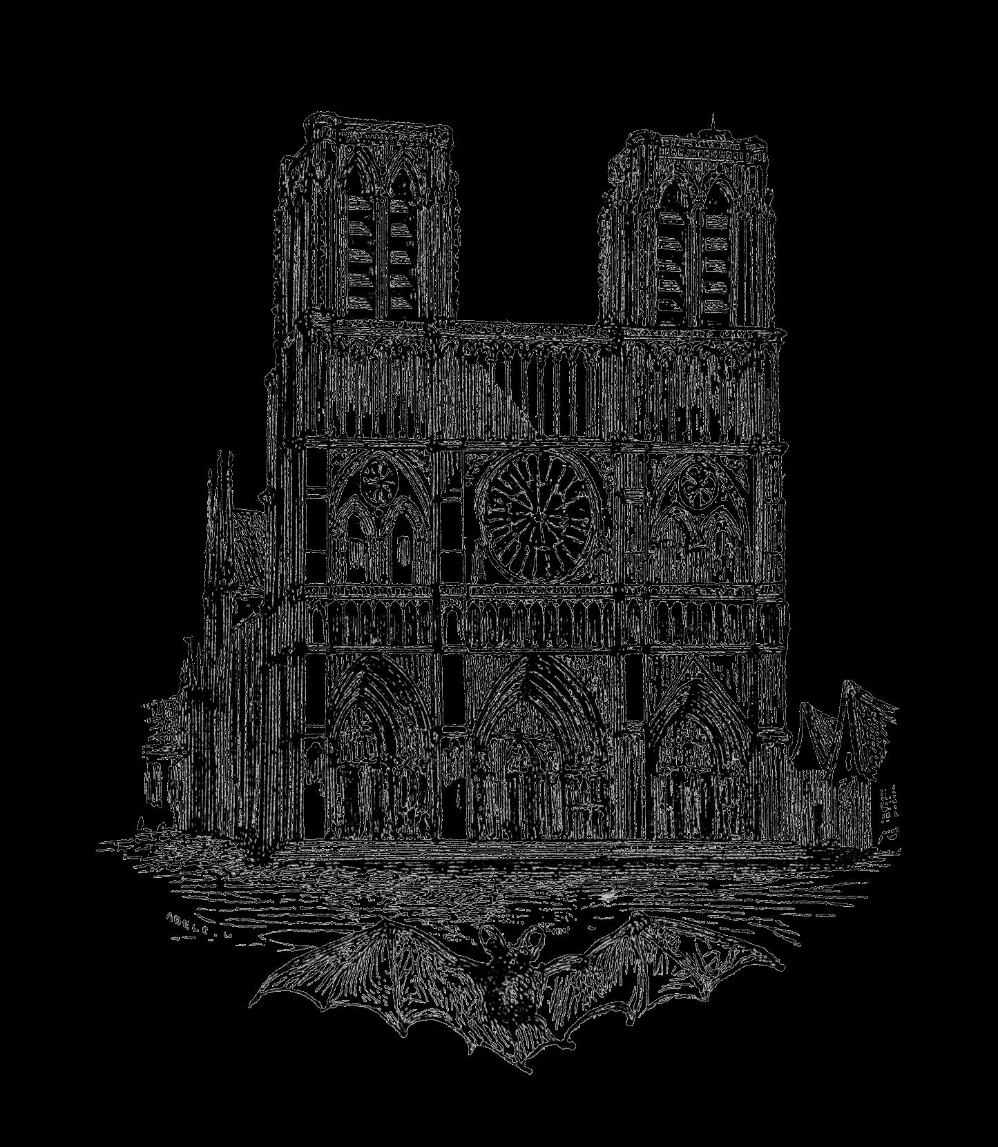 Notre Dame De Paris Manuscript Of History Historiae Secrets